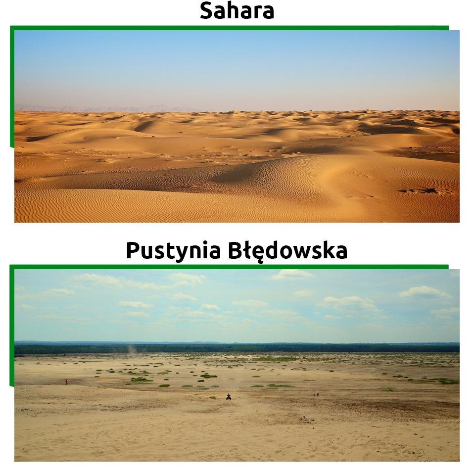 Atrakcje turystyczne w Polsce takie jak Pustynia Błędowska to unikat w skali całej Europy.